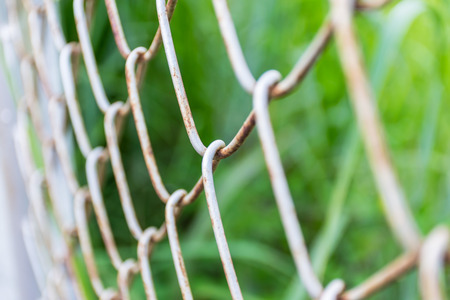 Fence rusty steel texture with green leaf blurred background Stock Photo
