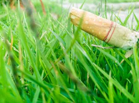 cigarette stub with green plant background