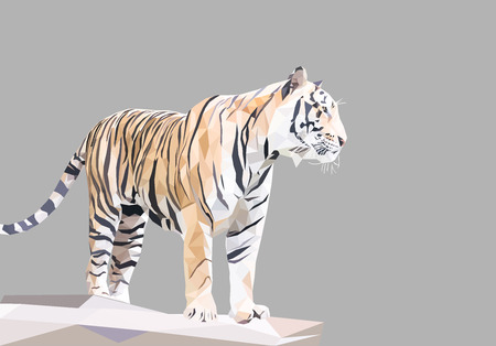tiger polygon, animal wildlife concept, low poly modelling geometric and triangle shape design, vector art and illustration.