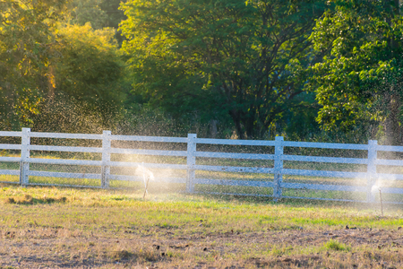 spray sprinkler in garden in the evening time,garden landscape in the farm,nature background concept.