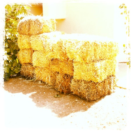 Bails of Hay Stock Photo