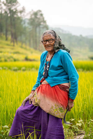A portrait of an old aged indian woman standing in a green field wearing rugged clothes.