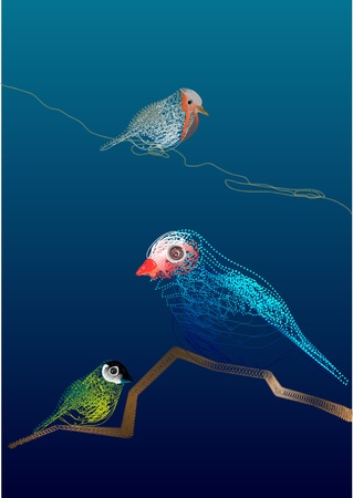 redbreast: Colorful vector line art of three birds, made by illustrator blend tool.