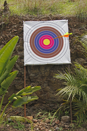 Archery Board, Shooting Targets photo
