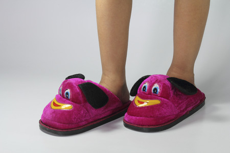 Soft Velvet Cartoon Indoor Slippers photo
