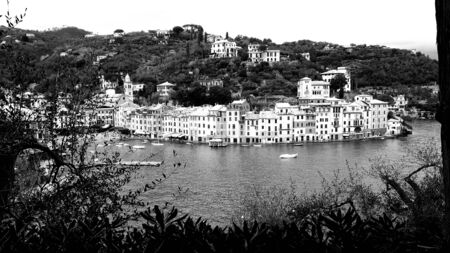 Beautiful caption of the Italian places in winter days near the seaside of Portofino in winter days, with some plants and waves over the rocks.