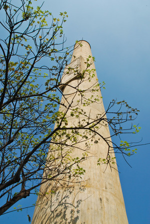 technologic: the branch of tree among stack in blue sky Stock Photo