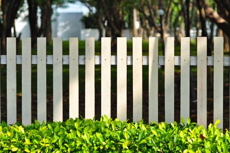 Valla de blanco en frente de jardín se ven tan relajarse entre los arbusto verde Foto de archivo - 44646247