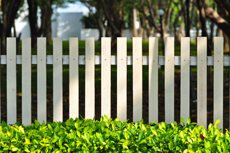 fencing: white fence in front of garden look so relax among green bush