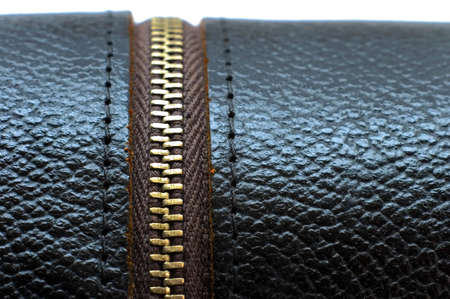upholster: leather case Stock Photo