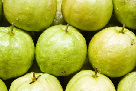 guava fruit photo