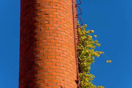 tall chimney: tall chimney