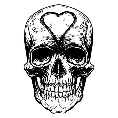 Skull skeleton head anatomy shirt tattoo cover. Vettoriali