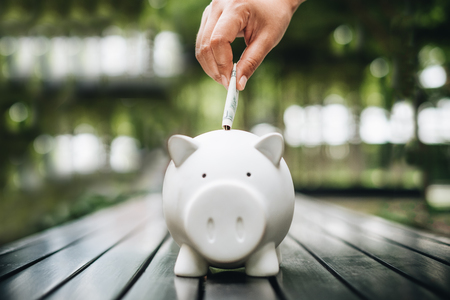 hand putting money bank note dollar into piggy for saving money wealth and financial concept.