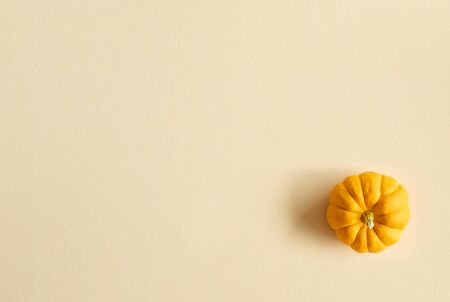 Thanksgiving background, pumpkin on orange background with copy space. flatlay
