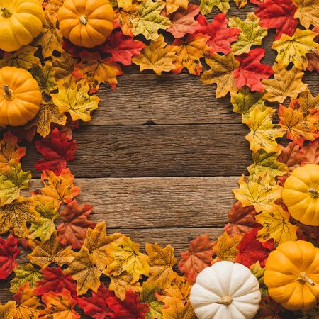 Maple leaves/leaf changing color from green to red in fall autumn seasonal over wood table background with copy space. flatlay Reklamní fotografie