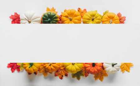 Thanksgiving background, pumpkin, leaves and decoration on white background with copy space. flatlay