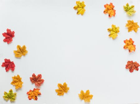 Maple leaves/leaf changing color from green to red in fall autumn seasonal over white background with copy space. flatlay Фото со стока