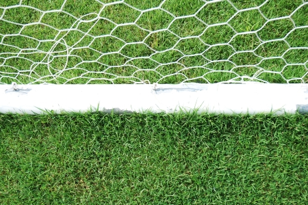 football field with goal net Stock Photo - 16689874