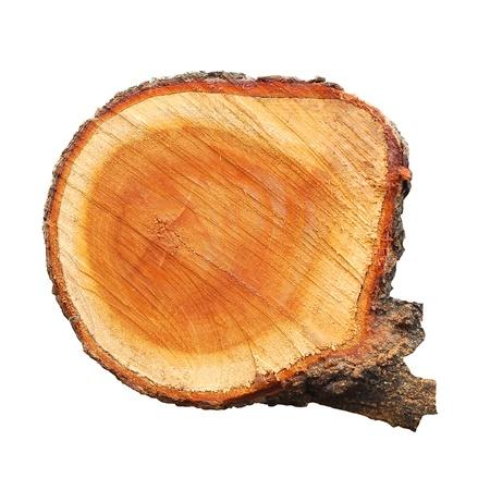 Oberfläche Holzschnitten auf weißem Hintergrund