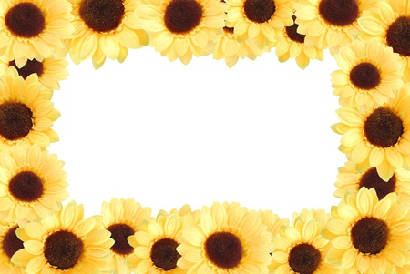 artificial yellow sunflowers background with white blank at center photo