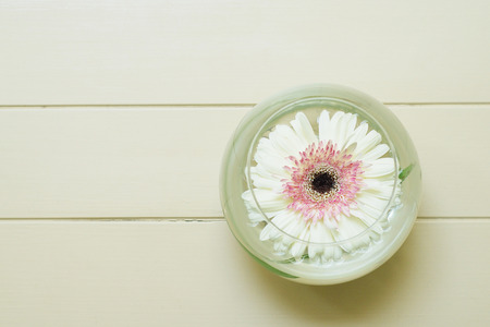 vigorously: beautyful flowr in glass of water on white table, spa, top view Stock Photo