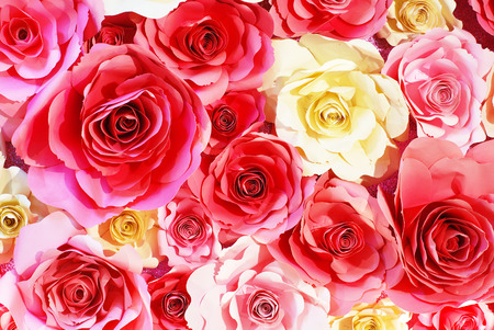 paper roses background Stock Photo