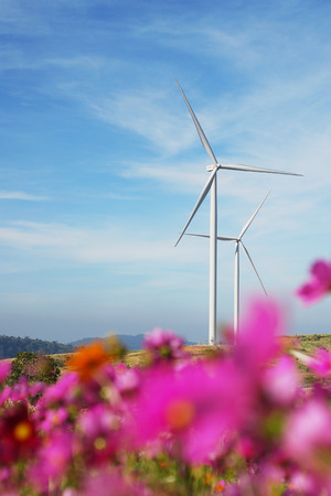 Wind Turbines and flowers garden in the foreground