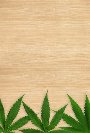 Marijuana leaf on wood background