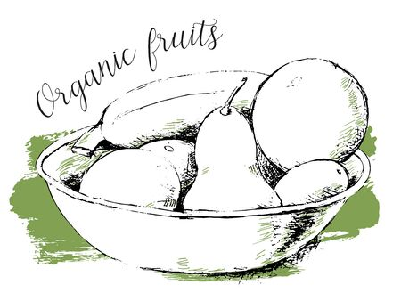 Beautiful vector hand drawn Fruits in a bowl with orange, banana, pear, Plango Illustration.- vector