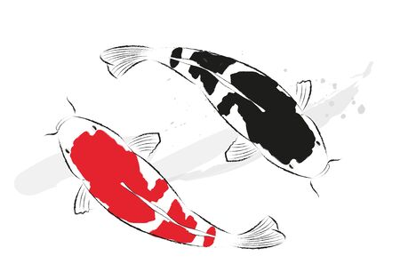 Red and black koi carps hand drawn with ink in painting style