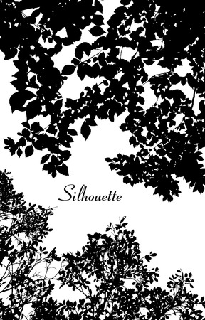 Vector leaves silhouette 矢量图像