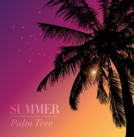 Coconut palm tree silhouette.