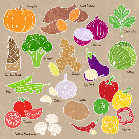 Collection of hand-drawn vegetables and spices.