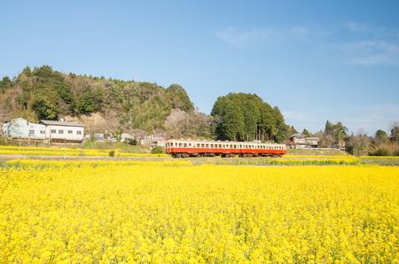 小湊鉄道、千葉 (県) 日本の観光