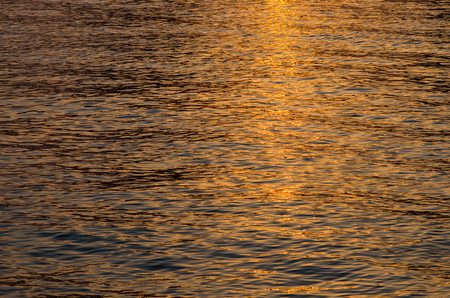 on the surface: water surface