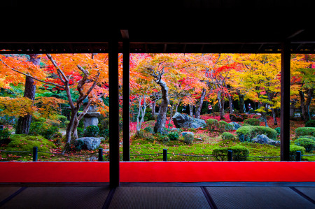 autmn: landscape of kyoto,tourism of japan