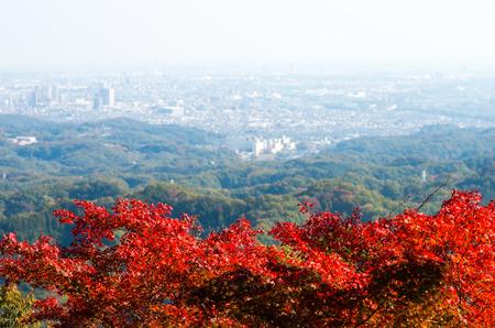 高尾山、東京、日本の秋 写真素材