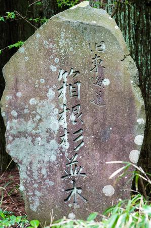 kanagawa: hakone avenue of cedar road sign,kanagawa,japan Stock Photo