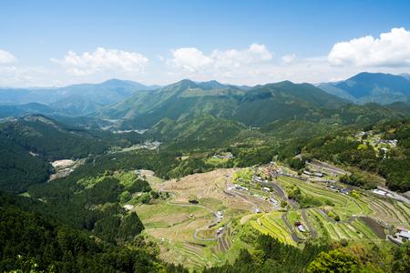 rice terrace: Maruyama rice terrace,mie,tourism of japan