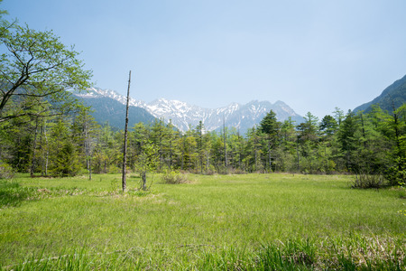 wetlands: Tashiro wetlands at Kamikochi,nagano,japan