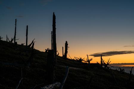 amanecer: breaking dawn of Masaki mountain pass at Odaigahara,Nara,Japan Foto de archivo