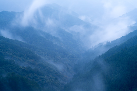 sightseeng: Nosegawa foggy mountain,Nara,Japan