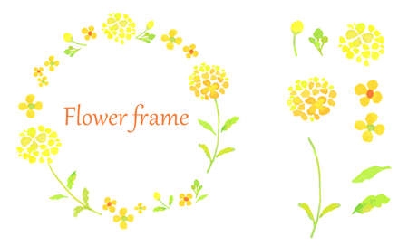 The frame of the rape blossoms Trace vector of the watercolor illustration