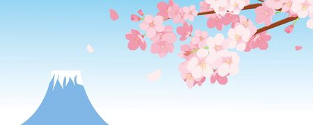 Fuji Cherry illustration