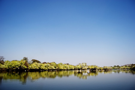 Kafue River Edged by Trees Under Clear Blue Skies, Zambia, Africa Stock Photo - 30260189