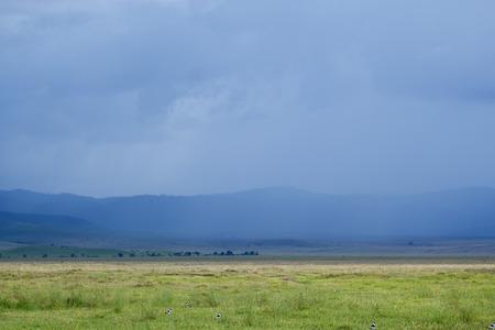 Thunder Storm in Ngorongoro Crater Area, Serengeti National Park, Tanzania, Africa photo