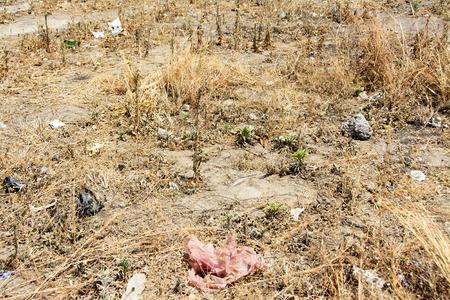 mundo contaminado: Contaminaci�n Urbana en Ciudad del �frica Meridional