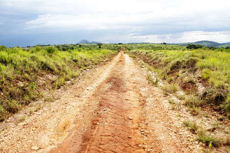 Dirt Road on Nyika Plateau, Malawi, Central Africa, with a Thunder Storm Approaching