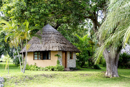 thatched: Round Hut with Thatched Roof in Lush Garden